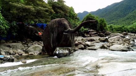 elephan spring
